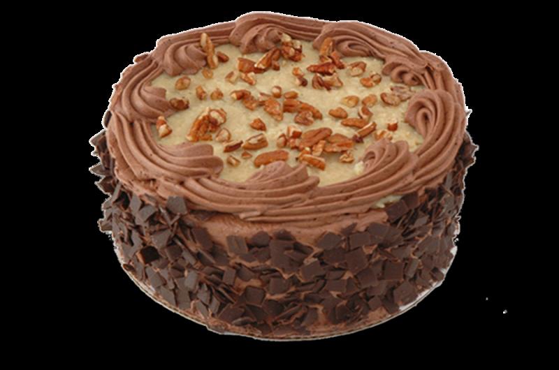 Chocolate Cake Coconut Squares